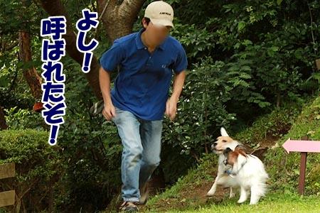 3_20120808231150.jpg