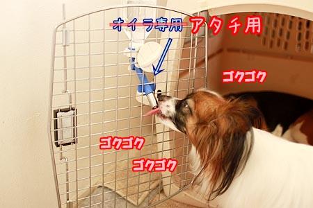 3_20120909163931.jpg