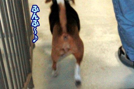 3_20120930223601.jpg