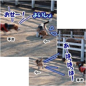 3_20130113231704.jpg