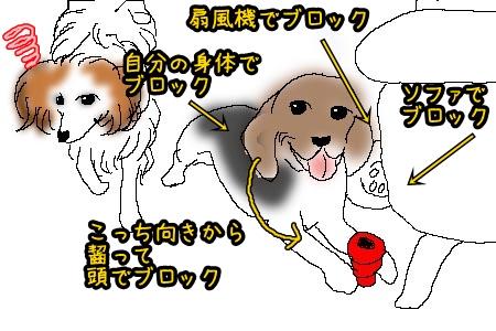 4_20120814210134.jpg