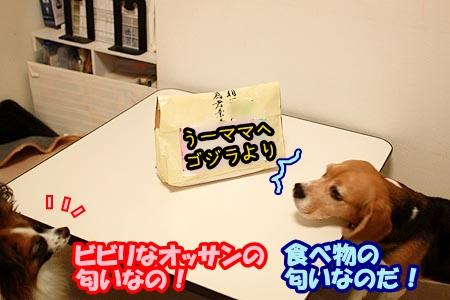 5_20120828210711.jpg