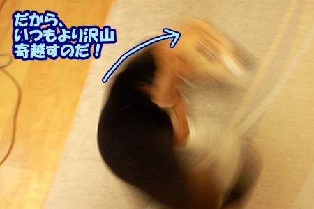 5_20120905200957.jpg