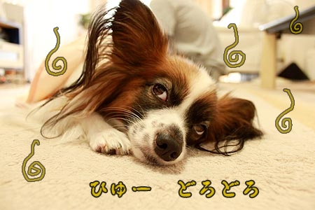 5_20121008140102.jpg