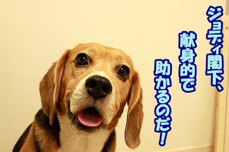 6_20120828210711.jpg