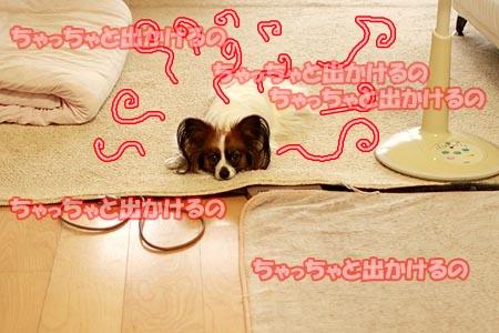 7_20120815215953.jpg