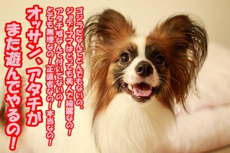 7_20120828210711.jpg
