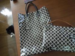 ビニコのバッグとおソロのポーチ