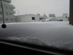 屋根の上の雪・・・
