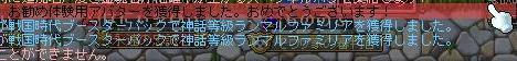 MAPLE120911_135024_crop.jpg