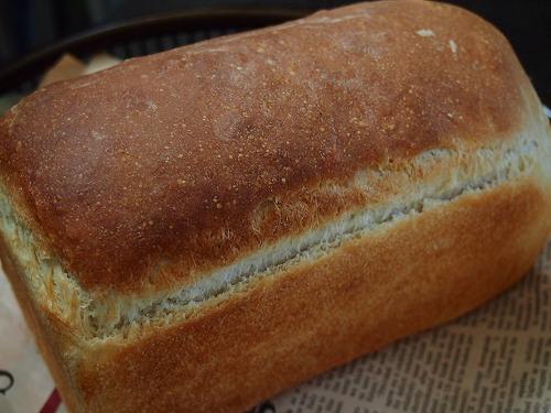 金時食パン3