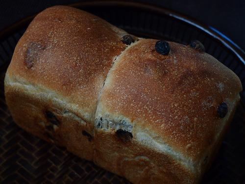 レーズン食パン3