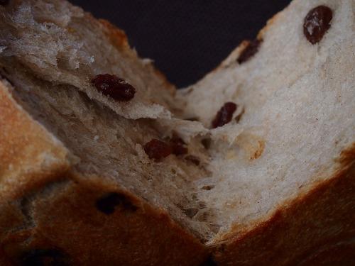 レーズン食パン5