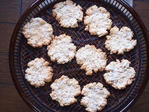 オートミール&元種クッキー1