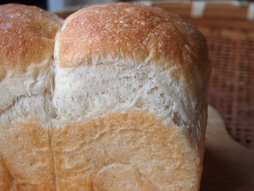 トースト・ブレッド2の5