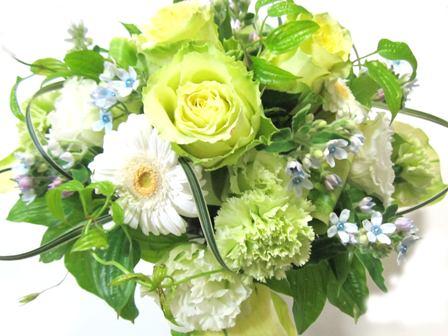 2012May26_flower_.jpg