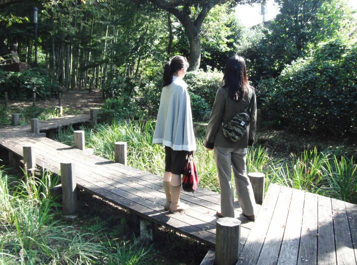 実篤公園菖蒲園
