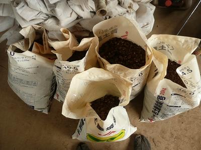 肥料袋にボカシ肥料を入れる