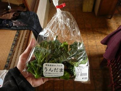 包装したスティックセニョールの頂花蕾