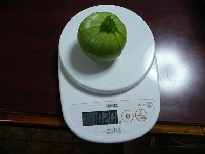 ずっしり重いグリーン・エッグ