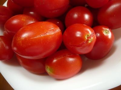 トマトソースになるシシリアンルージュ・ズーム