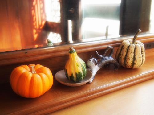 ネコアクセサリー皿とカボチャ