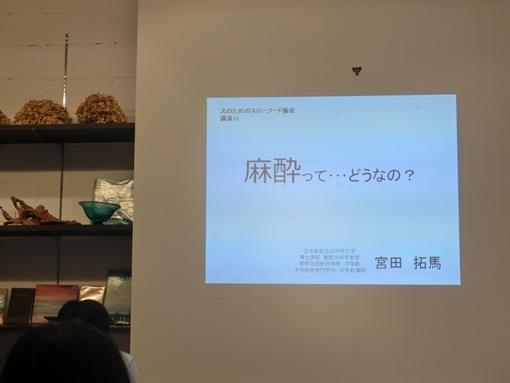 CIMG4632よっちゃん