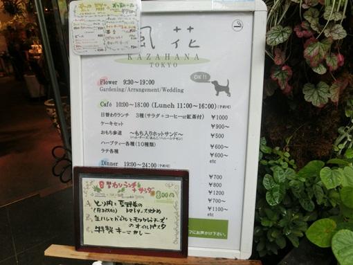 CIMG4671よっちゃん
