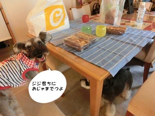 CIMG4814よっちゃん
