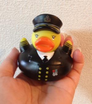 duck_convert_20120703221555.jpeg