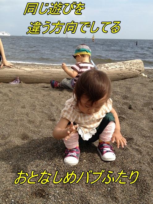 IMG_2930_20121003234317.jpg