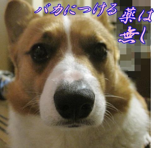 IMG_5683.jpg
