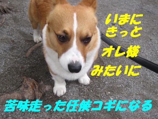 IMG_6114.jpg