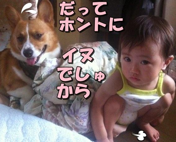 IMG_6206_20120727224559.jpg