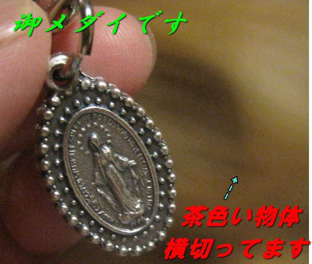 IMG_6379.jpg