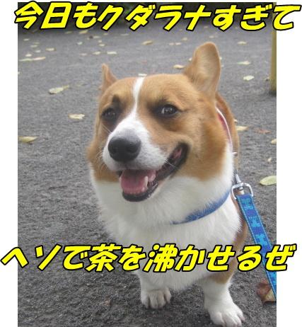 IMG_6739.jpg