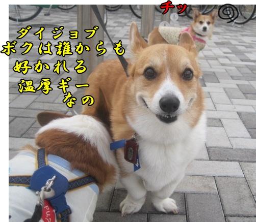 IMG_7173.jpg