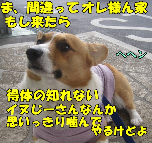 IMG_7215.jpg
