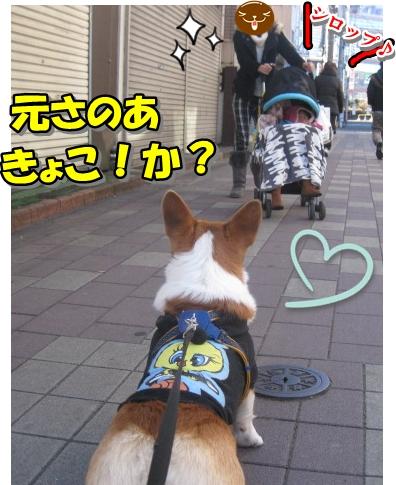 IMG_7563.jpg