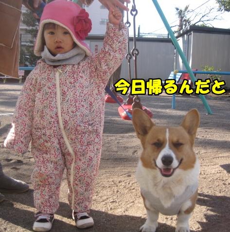 IMG_7627.jpg