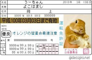 うーちゃん免許