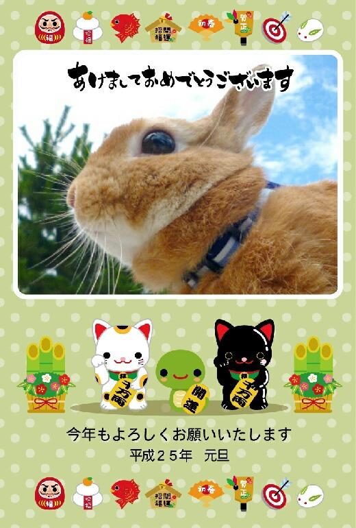 うーちゃん年賀2013-2