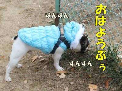1-1_20121113110934.jpg