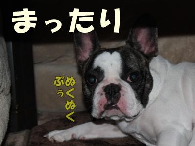 10-1_20121114110912.jpg