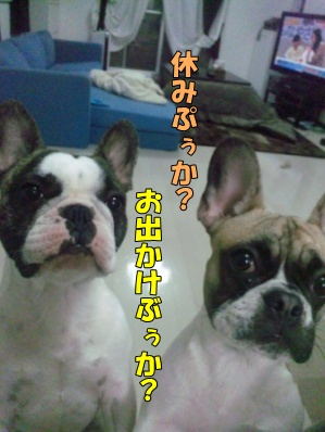 1_20120427133609.jpg