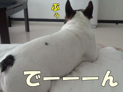 1_20120713155606.jpg