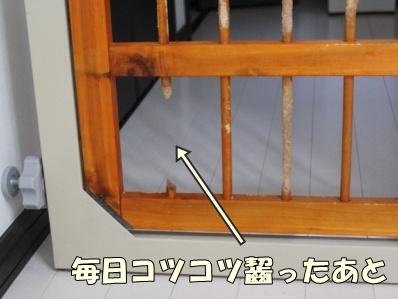 2-1_20120528163447.jpg