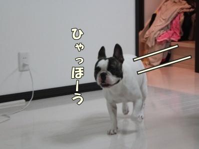 2-1_20121102171047.jpg