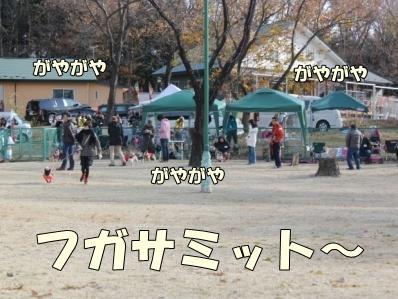 2-1_20121126165347.jpg