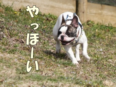 2_20120424095830.jpg